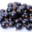 Stock Photo: Group of black currants