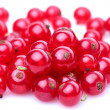 Stock Photo: Group of red currant