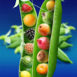 Stock Photo: Miracle peas
