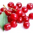Royalty-Free Stock Photo: Group of cherries