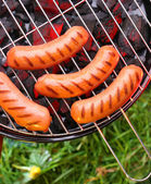 Fried sausages — Stock Photo