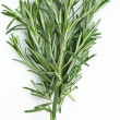 Rosemary — Stock Photo #3414959