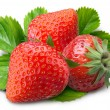 Strawberry — Foto de stock #3415468