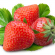 strawberry — Stock Photo #3415468