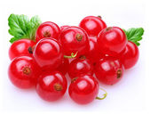 Currant red — Stock Photo