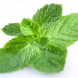 Mint — Stock Photo #3434017