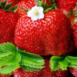 Strawberry — Stock Photo #3434451