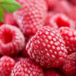 Raspberry — Stock Photo #3434849