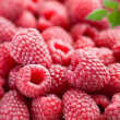 Raspberry — Stock Photo #3434890