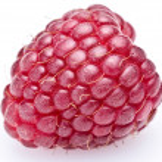 Raspberry — Stock Photo #3434909