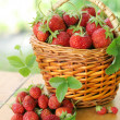 Strawberry — Stock Photo #3441013