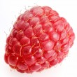 Raspberry — Stock Photo #3447965