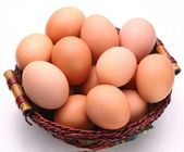 Egg — Stock Photo
