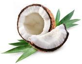 кокос — Стоковое фото