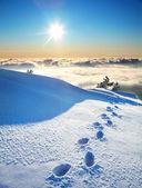 Footprints on a snow — Stock Photo
