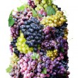 Vine bottle twined round with clusters of grape - Stock Photo