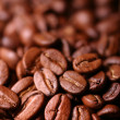 Coffee bean — Stock Photo #3603176