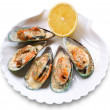 Mussel — Stock Photo #3605355