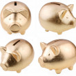 Gold pig as a money-box on a white background - Stock Photo