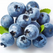Bilberry - Stock Photo