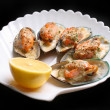 Mussel — Stock Photo #3607663
