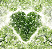 Heart, consisting of branches — Stock Photo