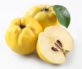 Quinces — Stock Photo