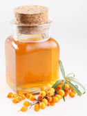 Sea buckthorn oil on a white background — Stock Photo