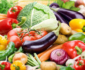 Colourful bright background consists of different vegetables — Stock Photo