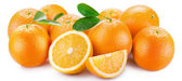 Oranges with segments on a white background — Stock Photo