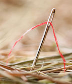 Needle with a red thread in a haystack — Stock Photo