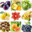 "Collection of images on the theme of ""fruits"" — Stock Photo"