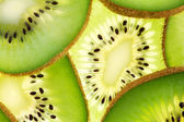 Back projected (lighted) cross sections of kiwi — Stock Photo