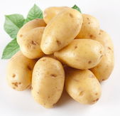 Yellow potatoes with leaves on a white background — Stock Photo
