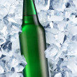 Bottle of beer on ice - Stock Photo