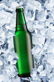 Bottle of beer on ice — Stock Photo