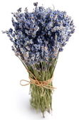 Bundle of dried lavender. — 图库照片