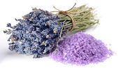 Handful of sea salt flavored with dried lavender flowers. — Stock Photo