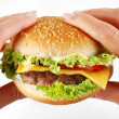 Royalty-Free Stock Photo: Hands hold a cheeseburger on a white background