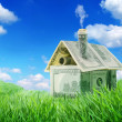 Dollar house in a green grass field over blue sky — Stock Photo
