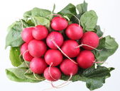 Bunch of radishes on a white background — Stock Photo