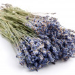 Bundle of dried lavender on a white background - Stock Photo