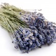 Bundle of dried lavender on a white background — Stock Photo