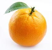 成熟橙色与白色背景上的叶子 — 图库照片