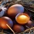 Chicken eggs in the straw with half a broken egg in the morning light. — Stock Photo