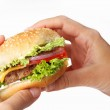 Hands hold a cheeseburger on a white background — Stock Photo