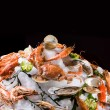 Seafood on ice. Isolated on black. — Stockfoto