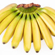 Bunch of bananas - Stock Photo