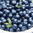 Crockery with blueberries. — Stock Photo