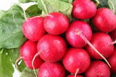 Bunch of radishes close up — Stock Photo
